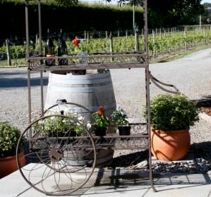 Half Day Wine Tours Martinborough
