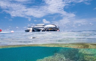 Cruise Whitsundays | Airlie Beach Great Barrier Reef